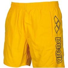 Arena шорты мужские пляжные Berryn